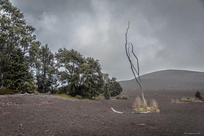 Volcano-020